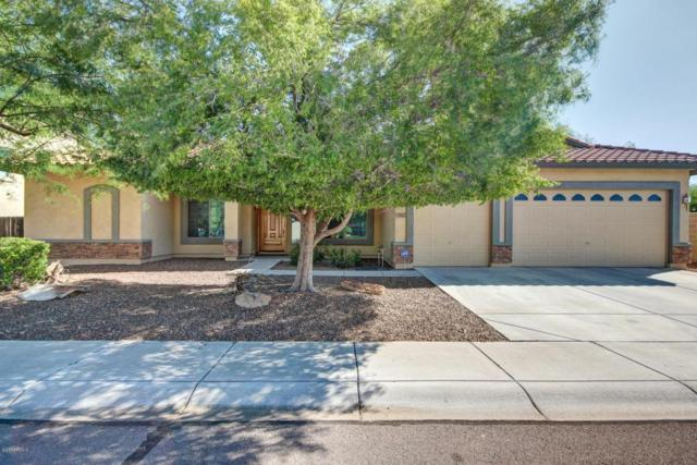 7467 W Tumblewood Drive, Peoria, AZ 85382 (MLS #5662946) :: The Everest Team at My Home Group