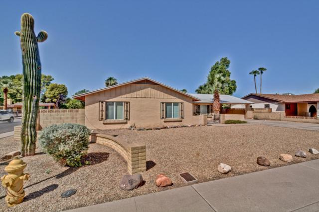 7602 N 33RD Avenue, Phoenix, AZ 85051 (MLS #5662957) :: Revelation Real Estate