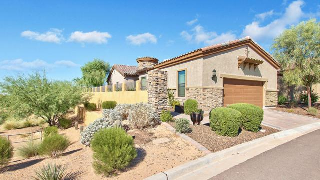 2038 N 89TH Street, Mesa, AZ 85207 (MLS #5662975) :: The Everest Team at My Home Group