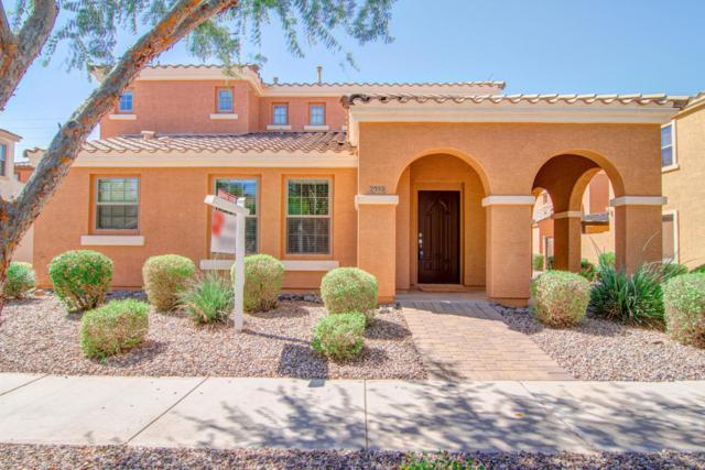2535 E Bart Street, Gilbert, AZ 85295 (MLS #5662991) :: The Everest Team at My Home Group