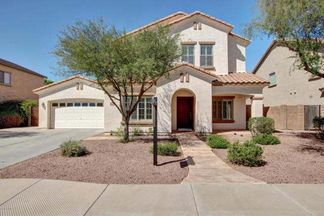 4088 E Peach Tree Drive, Chandler, AZ 85249 (MLS #5662999) :: Revelation Real Estate
