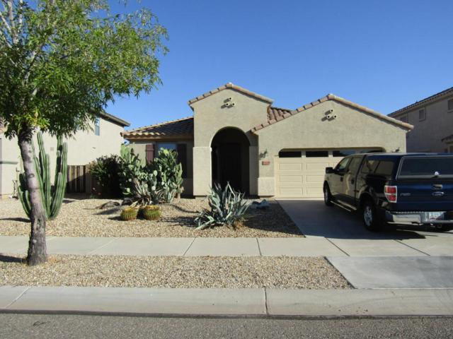 14214 W Ventura Street, Surprise, AZ 85379 (MLS #5663009) :: The Everest Team at My Home Group