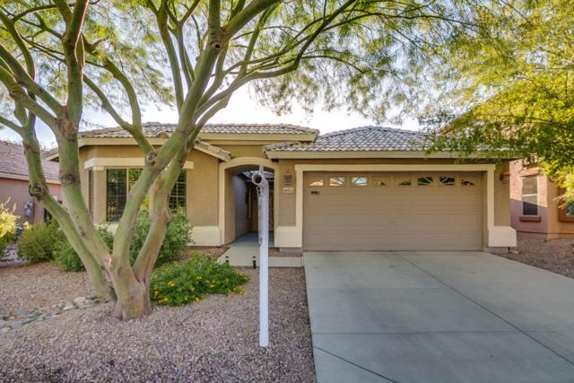 28924 N 24TH Lane, Phoenix, AZ 85085 (MLS #5663033) :: The Everest Team at My Home Group