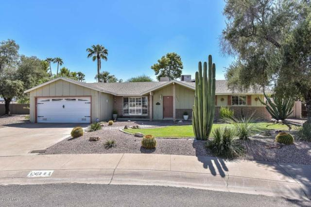 14202 N 5TH Street, Phoenix, AZ 85022 (MLS #5663039) :: The Everest Team at My Home Group
