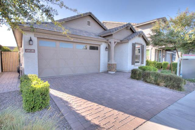 5062 S Bridal Vail Drive, Gilbert, AZ 85298 (MLS #5663040) :: The Everest Team at My Home Group