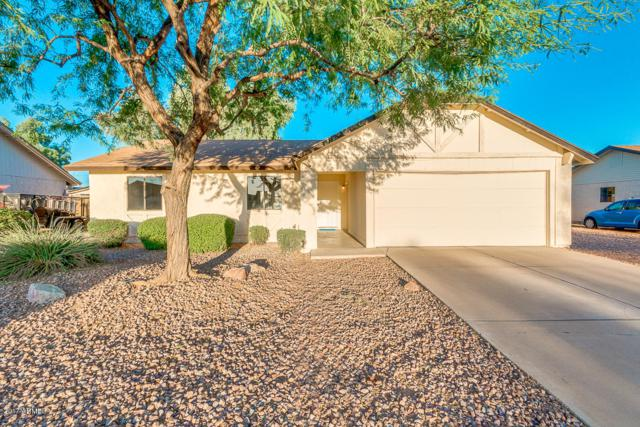 457 N Yale, Mesa, AZ 85213 (MLS #5663041) :: The Everest Team at My Home Group