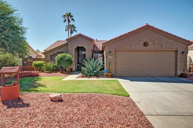 9229 W Charleston Avenue, Peoria, AZ 85382 (MLS #5663052) :: The Everest Team at My Home Group