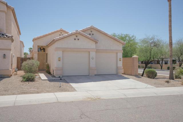 4955 W Villa Maria Drive, Glendale, AZ 85308 (MLS #5663054) :: Desert Home Premier