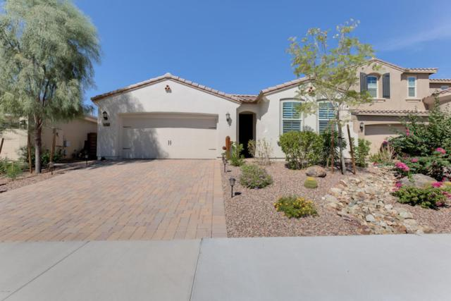 30688 N 138TH Avenue, Peoria, AZ 85383 (MLS #5663078) :: Kortright Group - West USA Realty