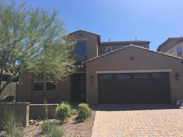 12917 W Cassia Trail, Peoria, AZ 85383 (MLS #5663169) :: The Laughton Team