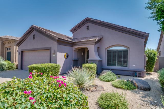 15723 E Cactus Drive, Fountain Hills, AZ 85268 (MLS #5663178) :: Lux Home Group at  Keller Williams Realty Phoenix