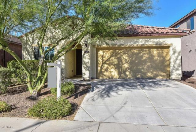 5436 W Yearling Road, Phoenix, AZ 85083 (MLS #5663182) :: The Laughton Team