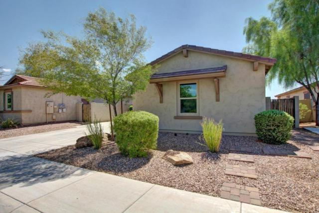 1471 E Hummingbird Way, Gilbert, AZ 85297 (MLS #5663199) :: Lux Home Group at  Keller Williams Realty Phoenix