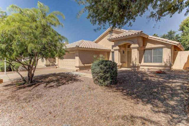 1890 E Tremaine Avenue, Gilbert, AZ 85234 (MLS #5663204) :: Lux Home Group at  Keller Williams Realty Phoenix