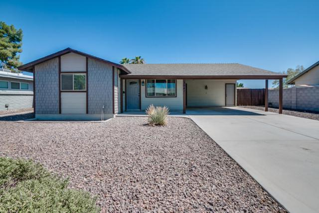 3941 S Beck Avenue, Tempe, AZ 85282 (MLS #5663234) :: Lux Home Group at  Keller Williams Realty Phoenix