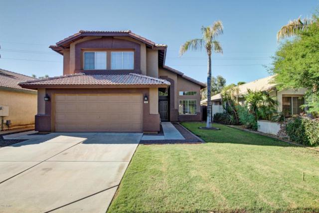 1431 E Gary Drive, Chandler, AZ 85225 (MLS #5663238) :: Lux Home Group at  Keller Williams Realty Phoenix
