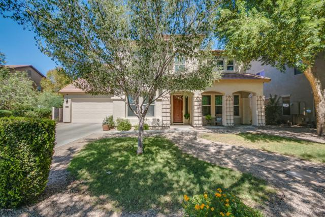 20224 E Sonoqui Boulevard, Queen Creek, AZ 85142 (MLS #5663247) :: Lux Home Group at  Keller Williams Realty Phoenix