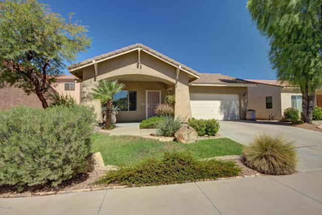 16068 W Caribbean Lane, Surprise, AZ 85379 (MLS #5663365) :: Desert Home Premier