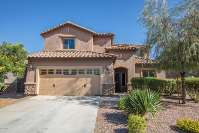 10786 W Yearling Road, Peoria, AZ 85383 (MLS #5663396) :: Desert Home Premier