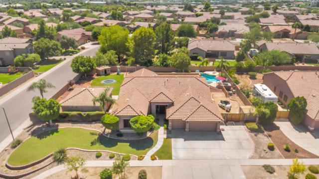 6989 W Grovers Avenue, Glendale, AZ 85308 (MLS #5663401) :: Desert Home Premier