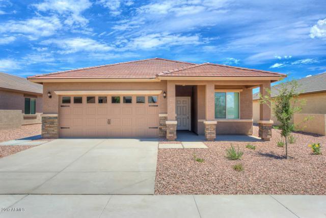 22410 W Morning Glory Street, Buckeye, AZ 85326 (MLS #5663417) :: Desert Home Premier