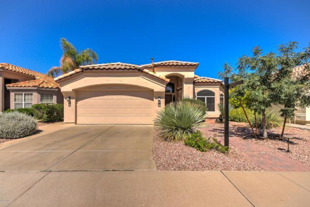 4852 W Oakland Street, Chandler, AZ 85226 (MLS #5663420) :: Lux Home Group at  Keller Williams Realty Phoenix