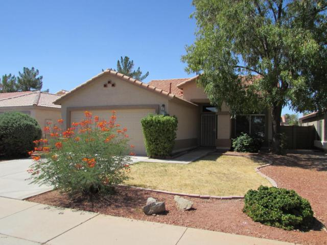196 N Rock Street, Gilbert, AZ 85234 (MLS #5663421) :: Lux Home Group at  Keller Williams Realty Phoenix