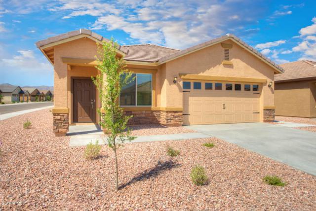 22411 W Loma Linda Boulevard, Buckeye, AZ 85326 (MLS #5663427) :: Desert Home Premier