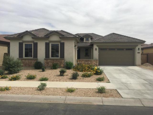 19685 E Walnut Road, Queen Creek, AZ 85142 (MLS #5663442) :: Lux Home Group at  Keller Williams Realty Phoenix