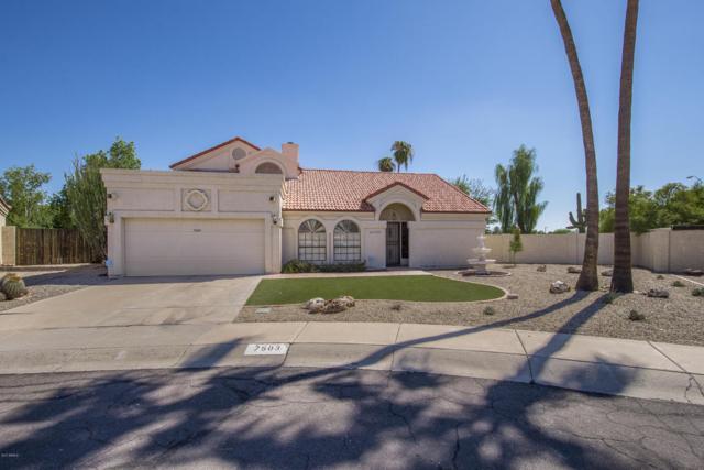 7503 W Julie Drive, Glendale, AZ 85308 (MLS #5663446) :: Desert Home Premier