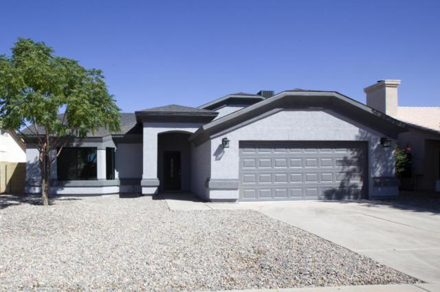 5313 N 79TH Drive, Glendale, AZ 85303 (MLS #5663476) :: Desert Home Premier