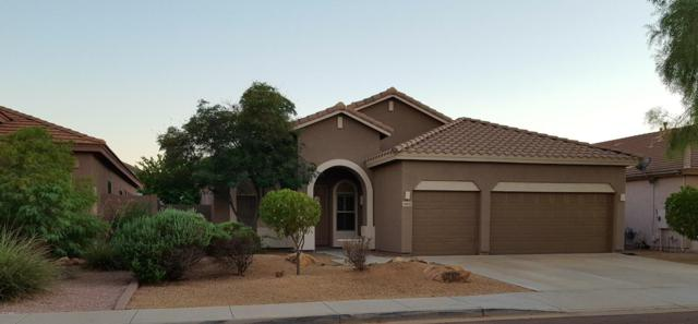 6951 W Paso Trail, Peoria, AZ 85383 (MLS #5663489) :: The Laughton Team