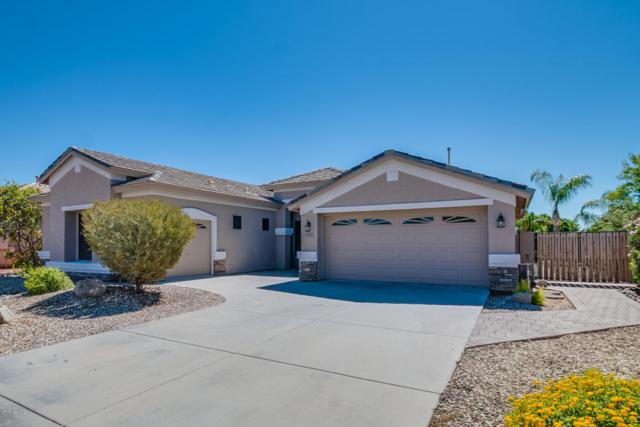 7235 W Saddlehorn Road, Peoria, AZ 85383 (MLS #5663492) :: Desert Home Premier