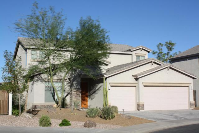 9711 S 45th Avenue, Laveen, AZ 85339 (MLS #5663541) :: Kortright Group - West USA Realty