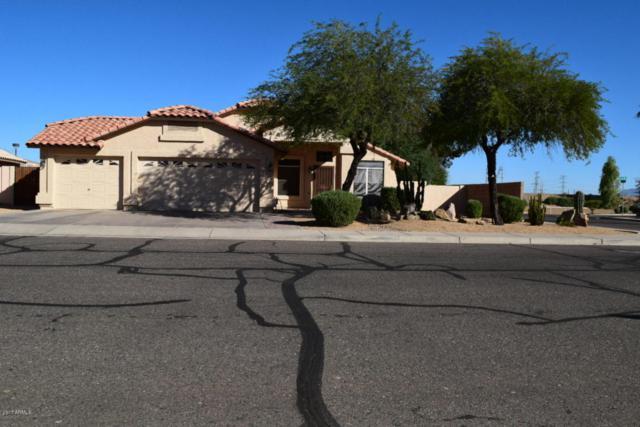 2401 N 123rd Avenue, Avondale, AZ 85392 (MLS #5663587) :: Devor Real Estate Associates