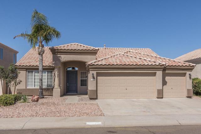 11622 W Palm Brook Drive, Avondale, AZ 85392 (MLS #5663612) :: Devor Real Estate Associates