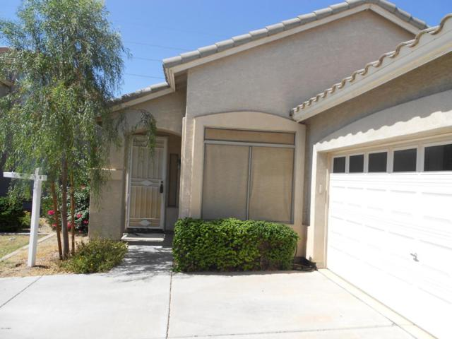742 S Jesse Street, Chandler, AZ 85225 (MLS #5663621) :: Group 46:10