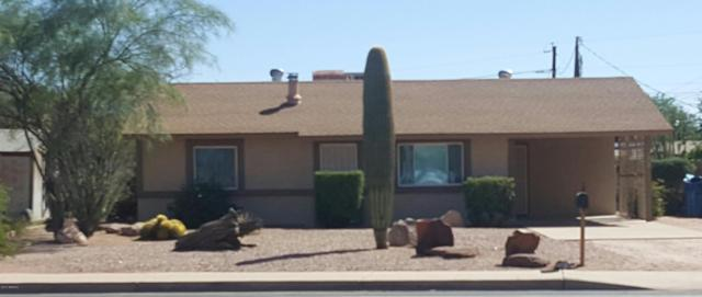 2381 S Royal Palm Road, Apache Junction, AZ 85119 (MLS #5663624) :: Group 46:10