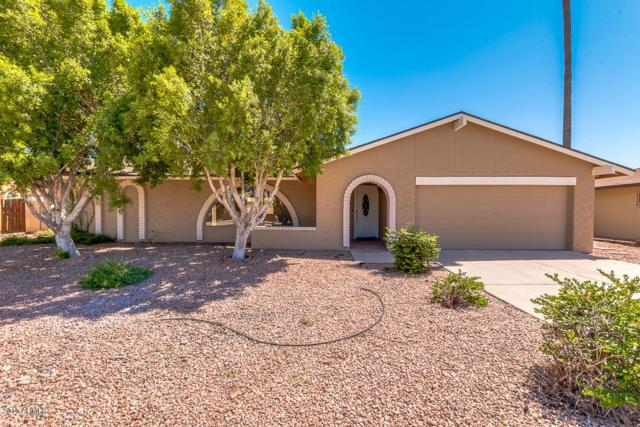 2017 E Magdalena Drive, Tempe, AZ 85283 (MLS #5663630) :: Group 46:10