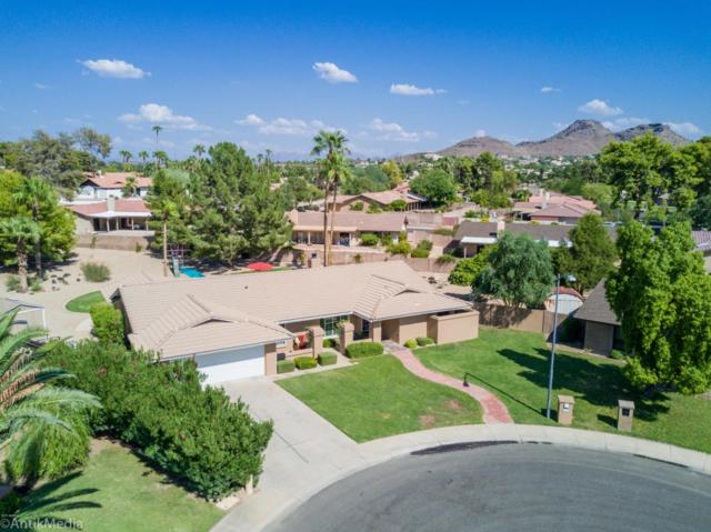 118 E Waltann Lane, Phoenix, AZ 85022 (MLS #5663632) :: Group 46:10