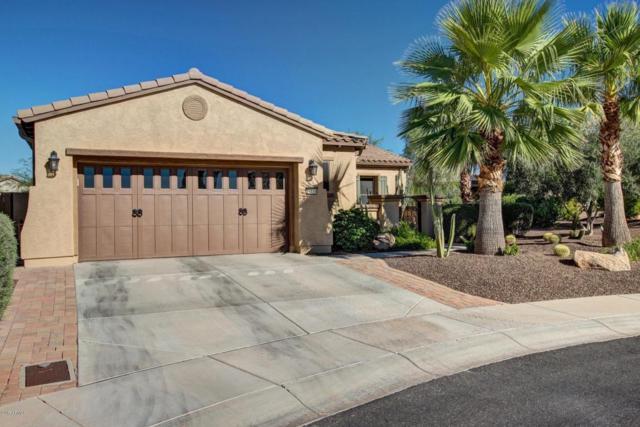 27114 N 130TH Lane N, Peoria, AZ 85383 (MLS #5663667) :: The Laughton Team