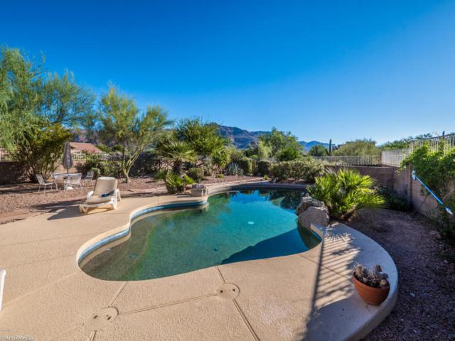 4417 S Louie Lamour Drive, Gold Canyon, AZ 85118 (MLS #5663679) :: The Pete Dijkstra Team