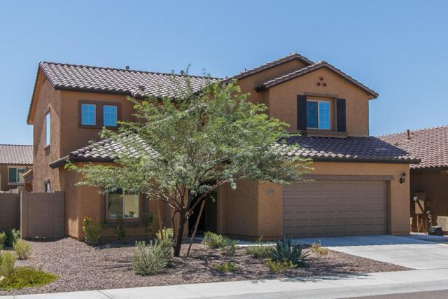 10743 W Desert Elm Lane, Peoria, AZ 85383 (MLS #5663697) :: The Laughton Team