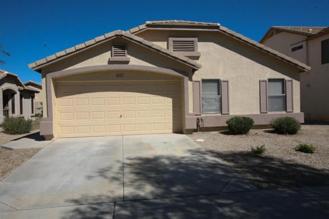 16692 W Belleview Street, Goodyear, AZ 85338 (MLS #5663787) :: Devor Real Estate Associates