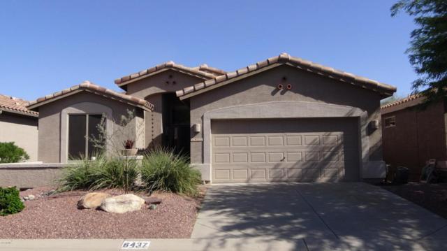 6437 S Palo Blanco Drive, Gold Canyon, AZ 85118 (MLS #5663790) :: The Pete Dijkstra Team