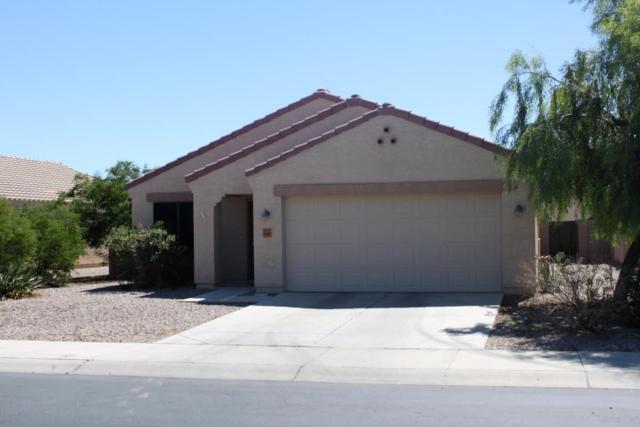 15987 W Gibson Lane, Goodyear, AZ 85338 (MLS #5663845) :: Devor Real Estate Associates