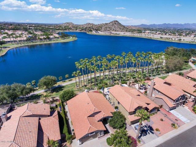 10952 S Desert Lake Drive, Goodyear, AZ 85338 (MLS #5663985) :: Devor Real Estate Associates