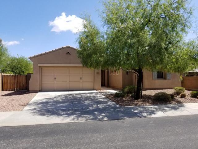 31225 N 131ST Drive, Peoria, AZ 85383 (MLS #5664014) :: The Worth Group
