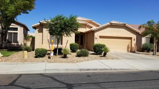 13138 W Citrus Way, Litchfield Park, AZ 85340 (MLS #5664054) :: Devor Real Estate Associates