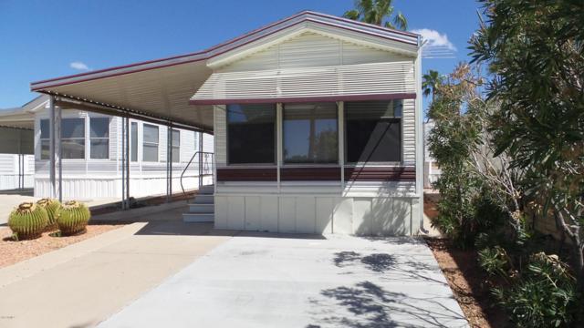115 S Kiowa Drive, Apache Junction, AZ 85119 (MLS #5664064) :: The Kenny Klaus Team